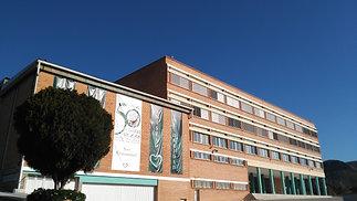ESO en el Colegio Los Olivos