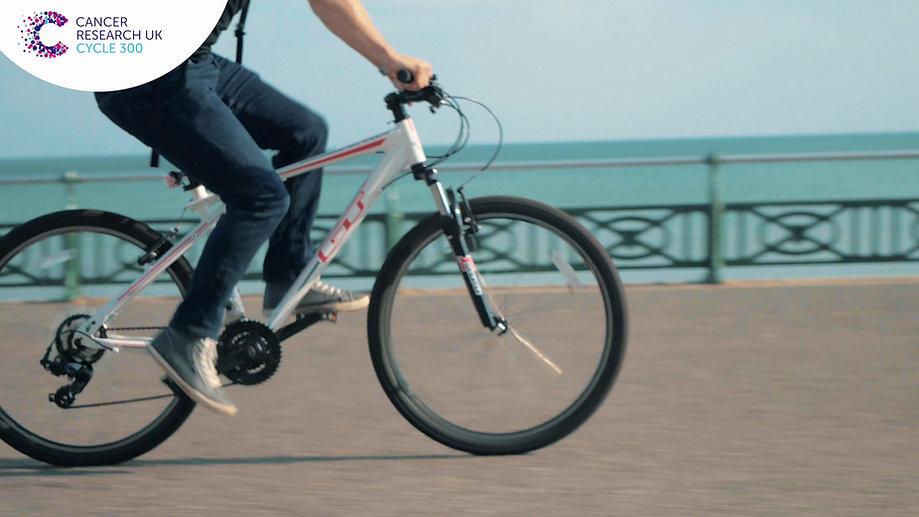 Cycle 300