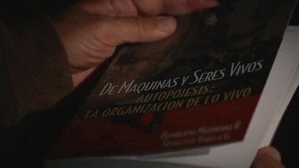EL Maestro Maturana RRSS 720H