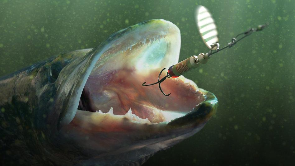 Школа рыболова