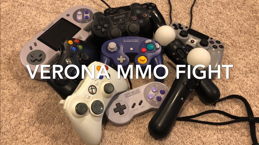 Verona MMO Fight