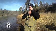 Go Fish Idaho Steelhead