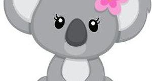 Song - Baby Koala