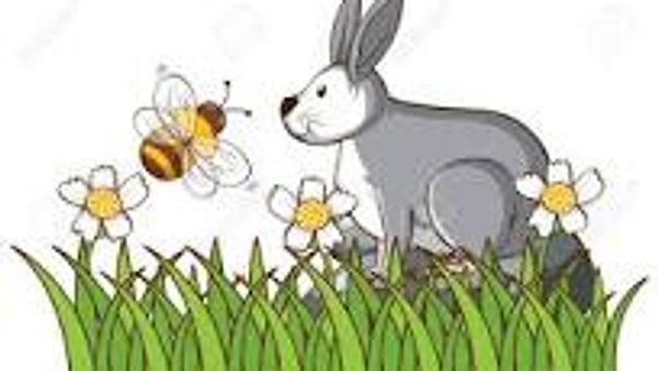 WK 5. Story - Bunny & Bee's Rainbow Colours