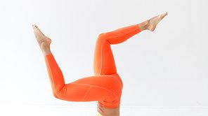 Arms Figure 4- Shoulders + Hammies
