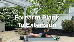 Forearm Plank to Extension