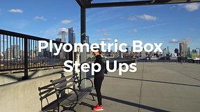 Plyometric Box Step Ups