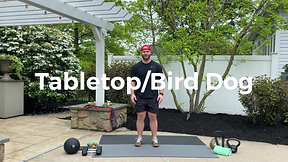 Tabletop/Bird Dog