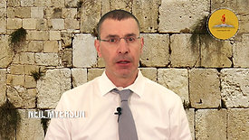 Neil Myerson - Principal Consultant