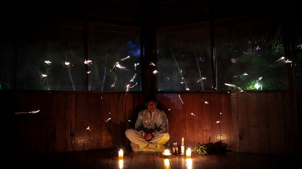 The Purpose of Ayahuasca