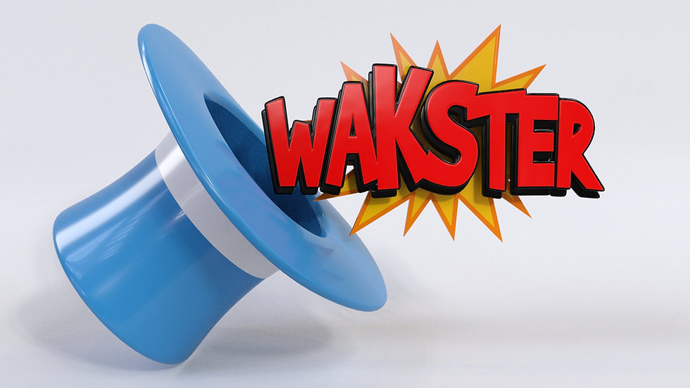 WAKSTER SHOWREEL