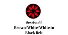 Brown White/White to Black Belt Session 8