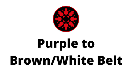 Purple to Brown/White Belt