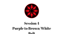 Purple to Brown/White Belt Session 4