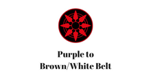 Purple to Brown/White Belt Session 3