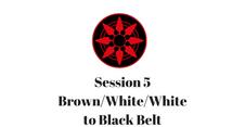 Brown/White/White to Black Belt Session 5