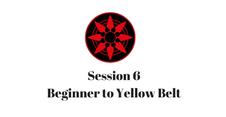 Beginner to Yellow Belt Session 6