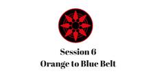 Orange to Blue Belt Session 6