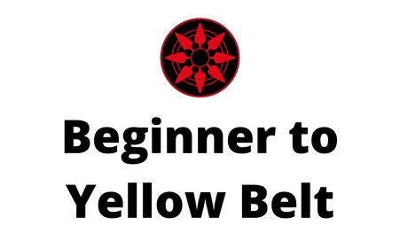 Beginner to Yellow Belt