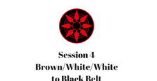 Brown/White/White to Black Belt Session 4