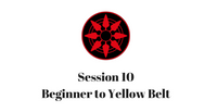 Beginner to Yellow Belt Session 10
