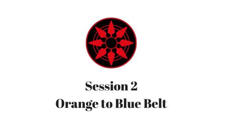 Orange to Blue Belt Session 2