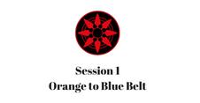 Orange to Blue Belt Session 1