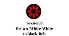Brown/White/White to Black Belt Session 3