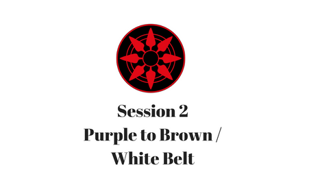 Purple to Brown/White Belt Session 2