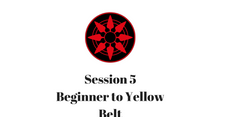 Beginner to Yellow Belt Session 5