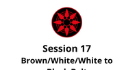 Brown/White/White to Black Belt Session 17