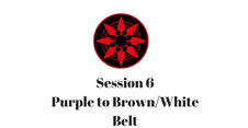 Purple to Brown/White Belt Session 6