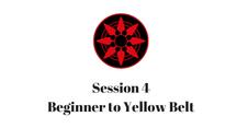 Beginner to Yellow Belt Session 4