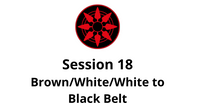 Brown/White/White to Black Belt Session 18