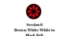 Brown/White/White to Black Belt Session 6