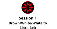 Brown/White/White to Black Belt Session 1