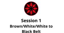 Brown/White/White to Black Belt Session 1