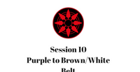 Purple to Brown/White Belt Session 10