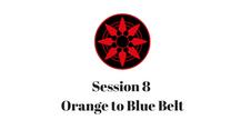 Orange to Blue Belt Session 8