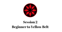 Beginner to Yellow Belt Session 2
