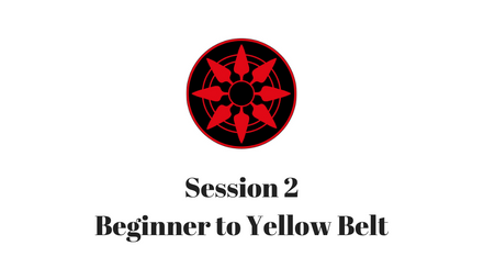 Beginner to Yellow Belt Session 2