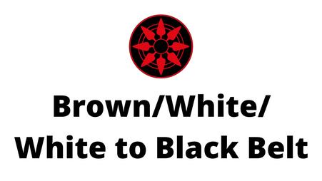 Brown/White/White to Black Belt