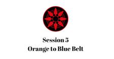 Orange to Blue Belt Session 5