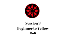 Beginner to Yellow Belt Session 3