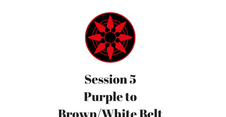 Purple to Brown/White Belt Session 5