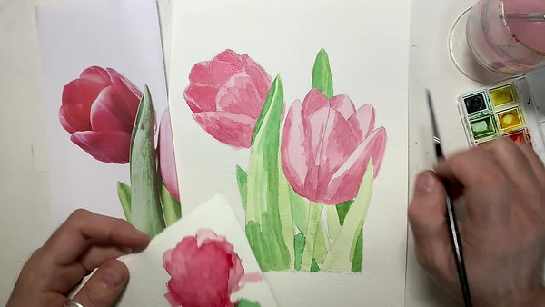 two tulips project