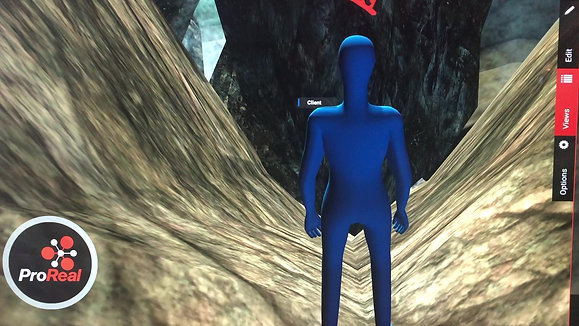 Using ProReal avatars to go deeper in therapy