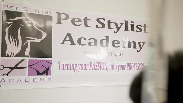 The Pet Stylist Academy