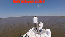 Bastrop Bayou Lost Red