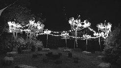 Larmer Tree Festival 2018 - Mellow Meadow